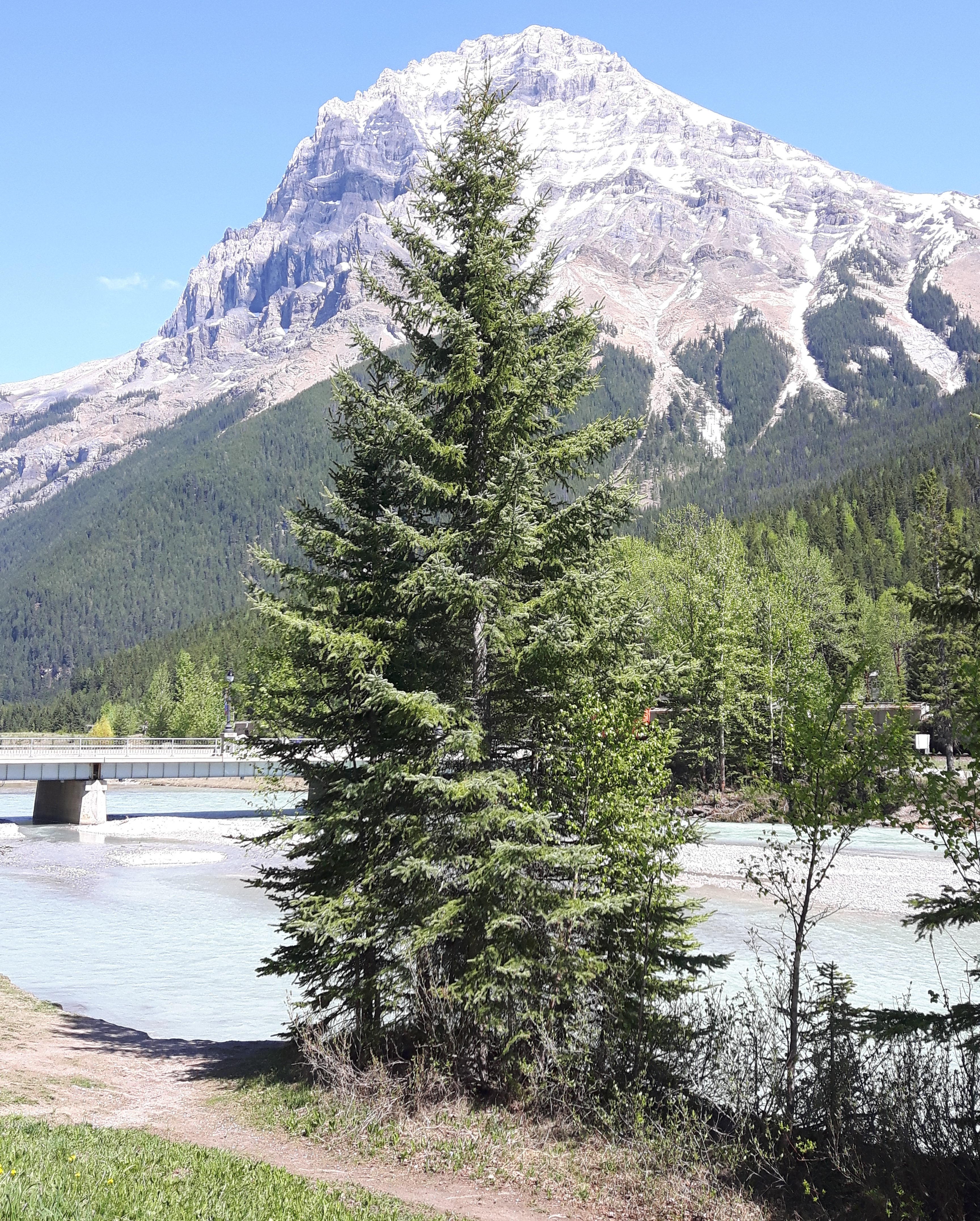 last-stop-on-road-trip-before-banff