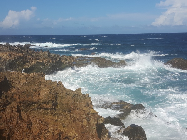 Sightseeing and Adventures in Aruba