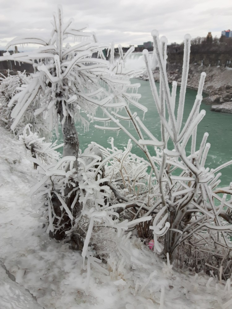 Niagara Falls; winter wonderland