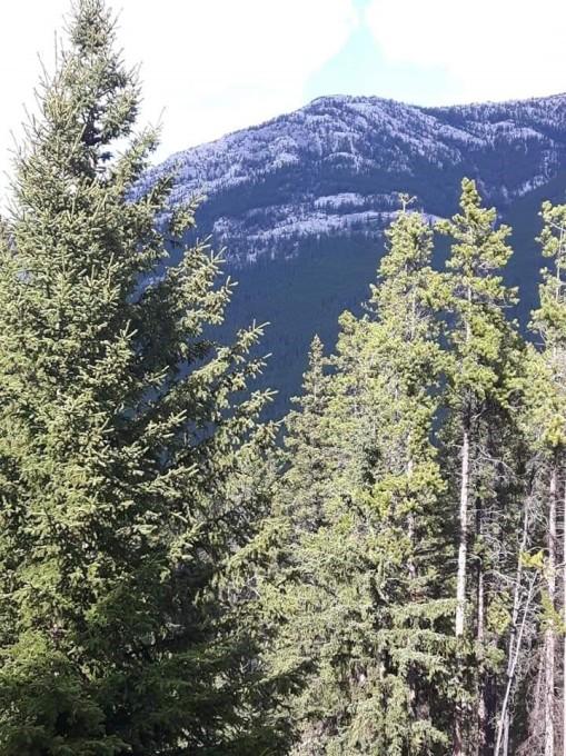 rimrock-resort-sulphur-mountain-canadian-rockies