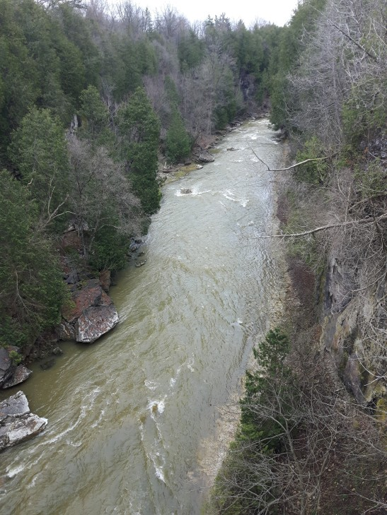 hiking-elora-gorge
