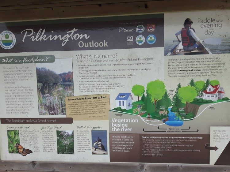 Pilkington Outlook
