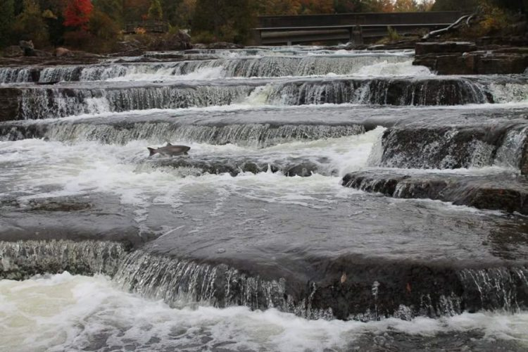 sauble-falls-sauble-beach-ontario-waterfalls
