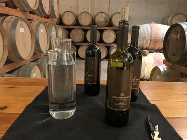 wine-anyone-wine-tour-at-jackson-triggs-niagara-region
