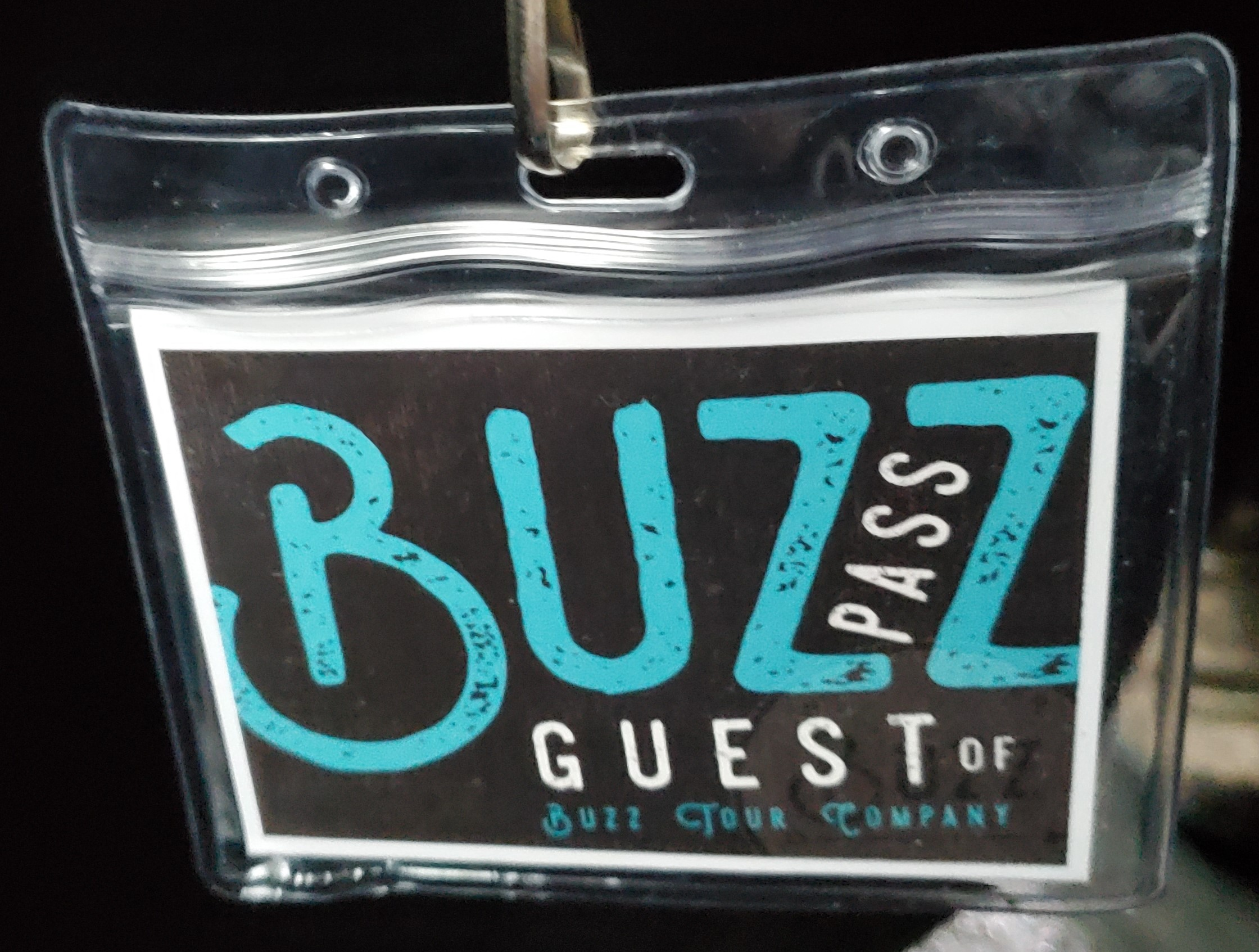 catch-the-buzz-with-buzz-tour-co