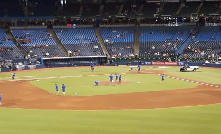Preparing the Baseball Field at the Rogers Center