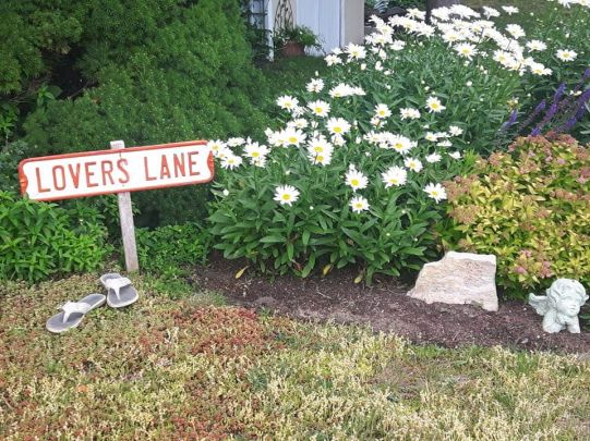 lovers-lane-kincardine-ontario