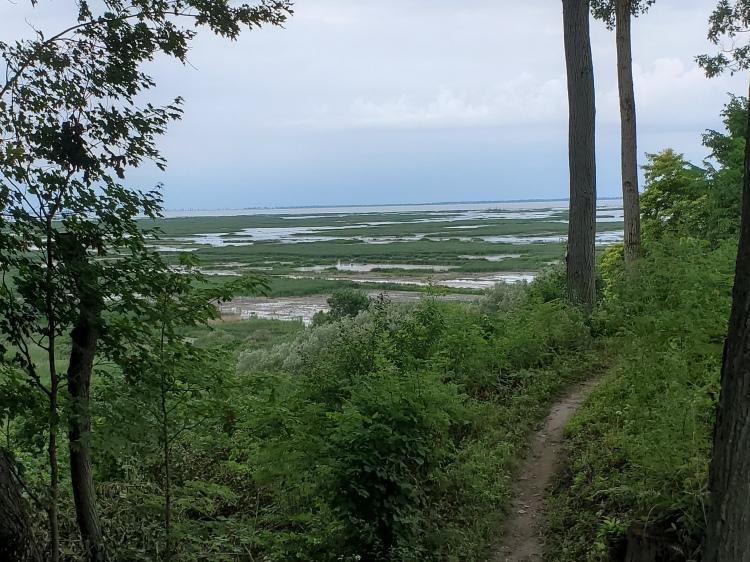 long-point-unesco-biosphere-reserve